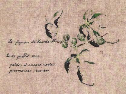 http://www.archive-host2.com/membres/images/1336321151/balades/gourdon/m_figuier.jpg