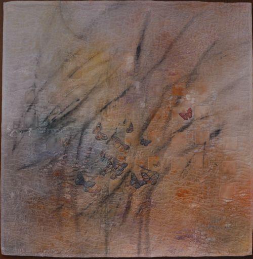 http://www.archive-host2.com/membres/images/1336321151/balades/smam/smam8/smam-8.jpg