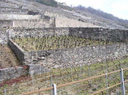 http://www.archive-host2.com/membres/images/1336321151/balades/suisse/clos.jpg
