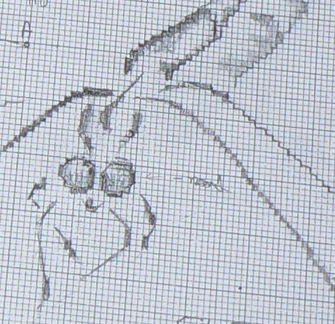 http://www.archive-host2.com/membres/images/1336321151/bestioles/insectes/librouge/lib-d1.jpg