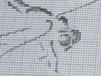http://www.archive-host2.com/membres/images/1336321151/bestioles/insectes/librouge/lib-g4.jpg
