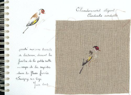 http://www.archive-host2.com/membres/images/1336321151/bestioles/oiseaux/chardonne/chardonneret_elegant.jpg