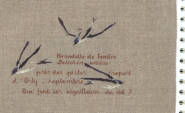 http://www.archive-host2.com/membres/images/1336321151/bestioles/oiseaux/hirondelles/hirondellesadp.jpg