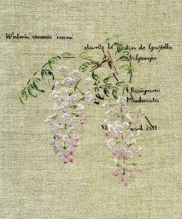 http://www.archive-host2.com/membres/images/1336321151/catablogue/vignettes/vignette_glycine-rose.jpg