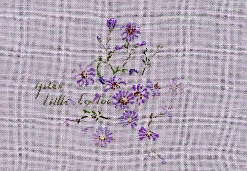 http://www.archive-host2.com/membres/images/1336321151/fleurs/Asters/Little_Carlow/Little_Carlow_G.jpg