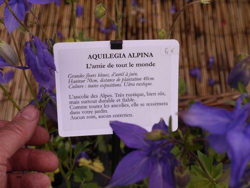 http://www.archive-host2.com/membres/images/1336321151/fleurs/Colombines/alpina-label.jpg