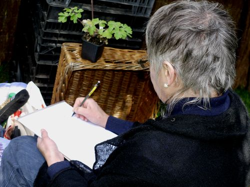 http://www.archive-host2.com/membres/images/1336321151/fleurs/Colombines/alpina0.jpg