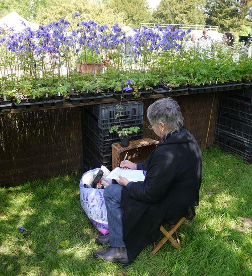 http://www.archive-host2.com/membres/images/1336321151/fleurs/Colombines/alpina2.jpg