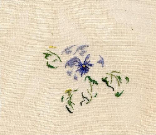 http://www.archive-host2.com/membres/images/1336321151/fleurs/Viola_gaze/gaze-B.jpg
