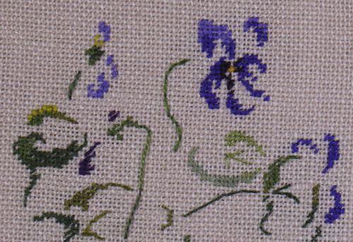 http://www.archive-host2.com/membres/images/1336321151/fleurs/Violas/Reine_Charlotte/RC_G1.jpg