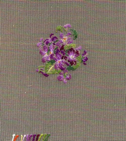 http://www.archive-host2.com/membres/images/1336321151/fleurs/Violas/bel-gazou/bgz-0.jpg