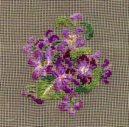http://www.archive-host2.com/membres/images/1336321151/fleurs/Violas/bel-gazou/bgz-1.jpg