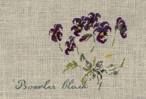 http://www.archive-host2.com/membres/images/1336321151/fleurs/Violas/bowles/Viola_Bowles_Black-2.jpg