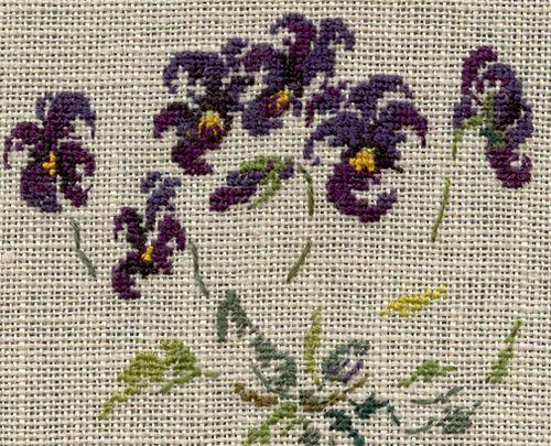http://www.archive-host2.com/membres/images/1336321151/fleurs/Violas/bowles/Viola_Bowles_Black-GP.jpg