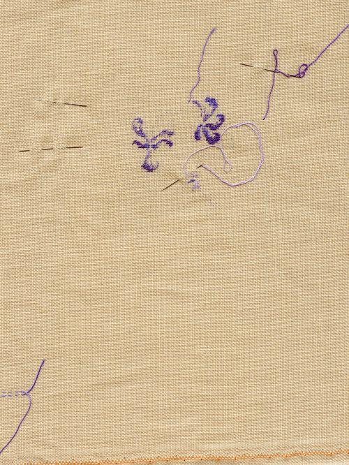 http://www.archive-host2.com/membres/images/1336321151/fleurs/Violas/canina1-0.jpg