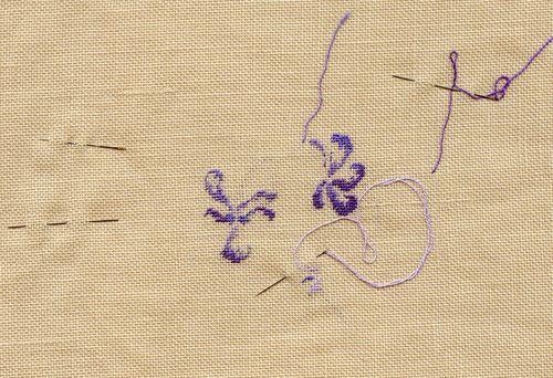 http://www.archive-host2.com/membres/images/1336321151/fleurs/Violas/canina1-2.jpg