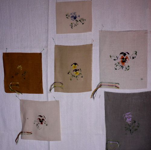 http://www.archive-host2.com/membres/images/1336321151/fleurs/Violas/groupe/pp-1-1.jpg