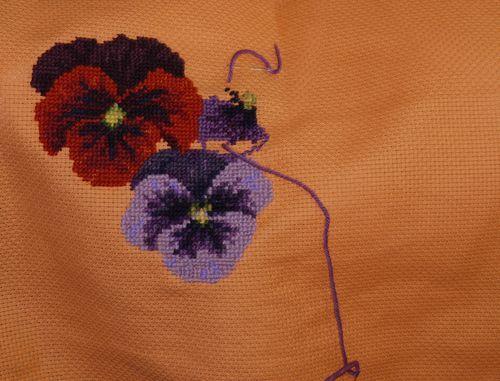 http://www.archive-host2.com/membres/images/1336321151/fleurs/Violas/orange/ao1-0.jpg