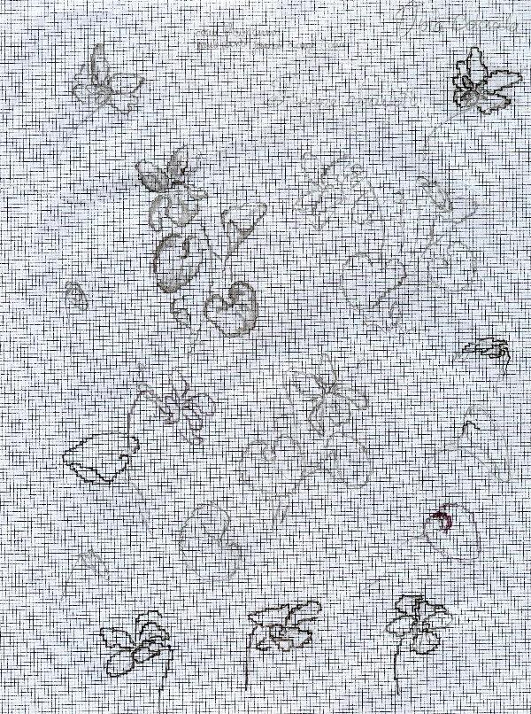 http://www.archive-host2.com/membres/images/1336321151/fleurs/Violas/ronde/dessin1.jpg