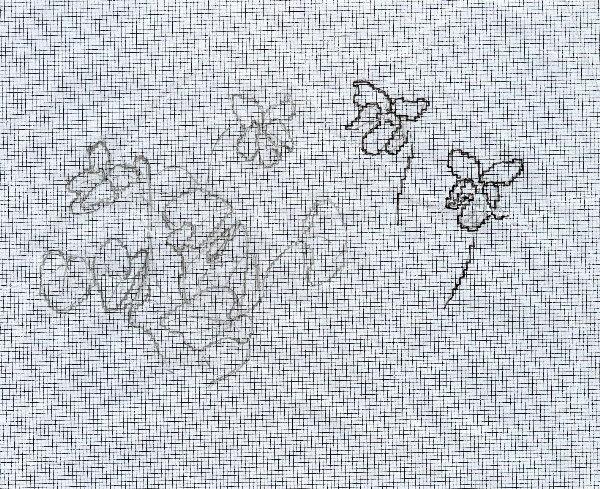 http://www.archive-host2.com/membres/images/1336321151/fleurs/Violas/ronde/dessin2.jpg
