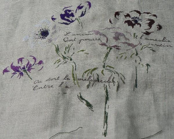http://www.archive-host2.com/membres/images/1336321151/fleurs/anemones/anemo_voy2JPG.jpg