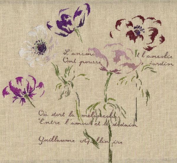 http://www.archive-host2.com/membres/images/1336321151/fleurs/anemones/anemones_L6000.jpg