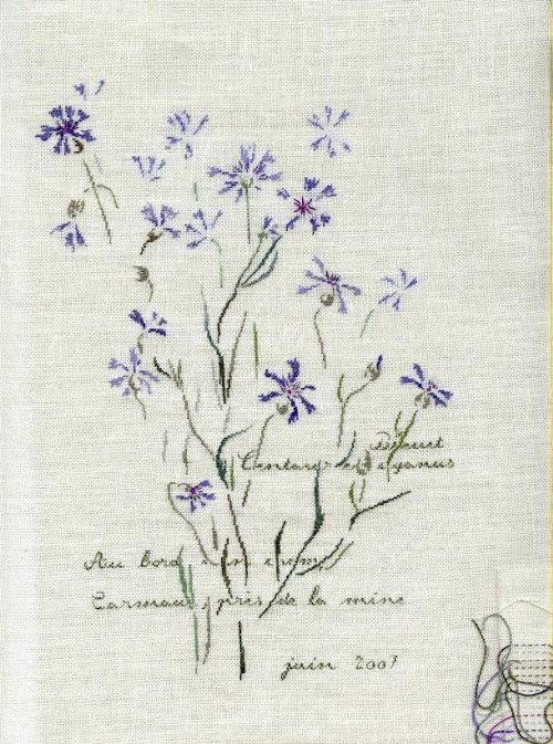 http://www.archive-host2.com/membres/images/1336321151/fleurs/bleuets/cyan_0.jpg