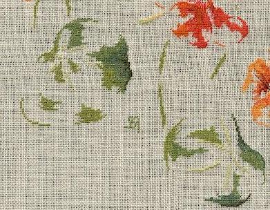http://www.archive-host2.com/membres/images/1336321151/fleurs/capucine/vignette_fin.jpg