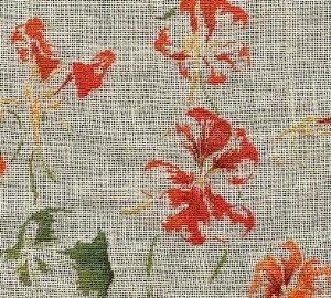 http://www.archive-host2.com/membres/images/1336321151/fleurs/capucine/vignette_quatre.jpg