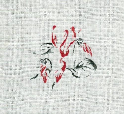 http://www.archive-host2.com/membres/images/1336321151/fleurs/cyclamen/Cyclamendumarquoir.jpg