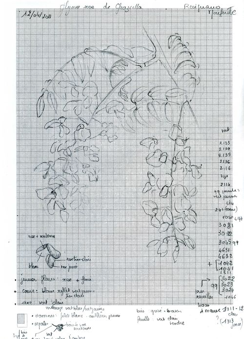 http://www.archive-host2.com/membres/images/1336321151/fleurs/glycine/rose/gr-D.jpg