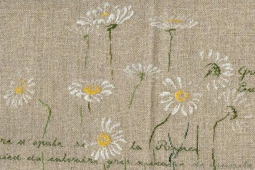 http://www.archive-host2.com/membres/images/1336321151/fleurs/marguerites/Mfin_C.jpg