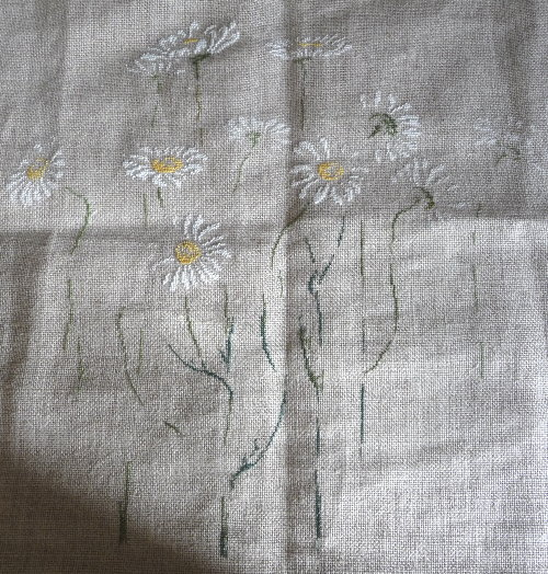 http://www.archive-host2.com/membres/images/1336321151/fleurs/marguerites/ms.jpg