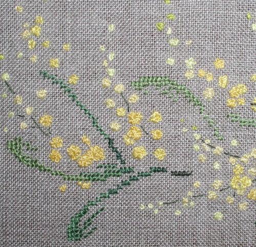 http://www.archive-host2.com/membres/images/1336321151/fleurs/mimosa/abc_mim_bas.jpg