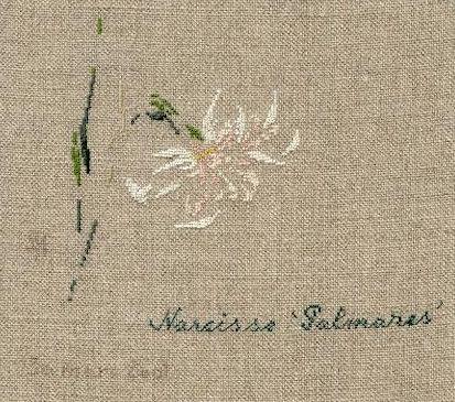 http://www.archive-host2.com/membres/images/1336321151/fleurs/narcisses/Palmares/palmares.jpg