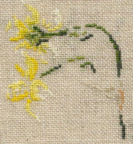 http://www.archive-host2.com/membres/images/1336321151/fleurs/narcisses/Pipit/pipit_fl.jpg