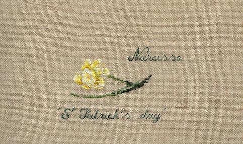 http://www.archive-host2.com/membres/images/1336321151/fleurs/narcisses/Saint-Patrick/saint_patrick.jpg