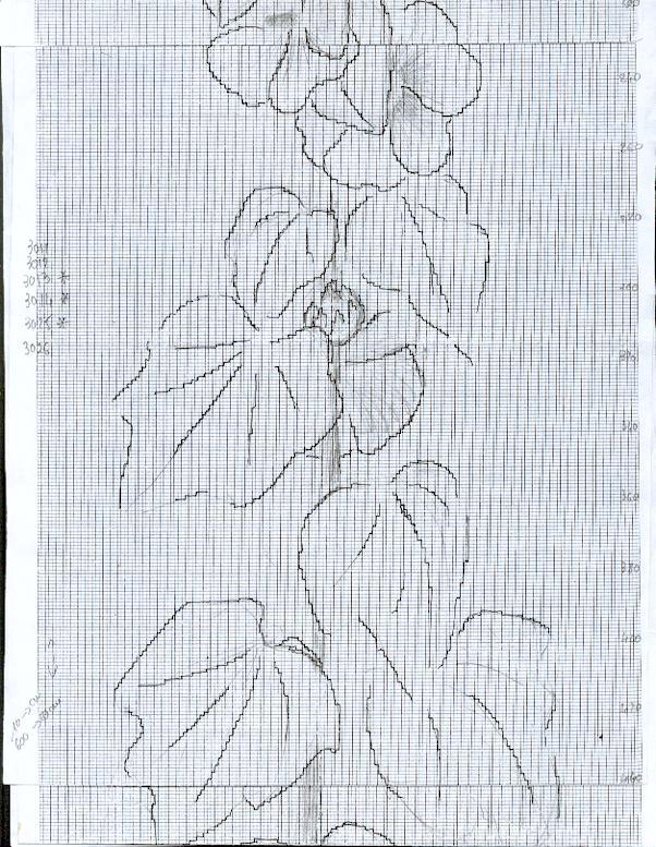 http://www.archive-host2.com/membres/images/1336321151/fleurs/passerose/d2.jpg