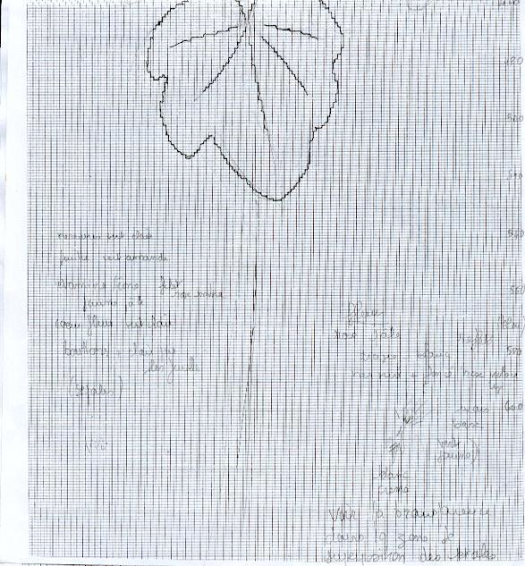 http://www.archive-host2.com/membres/images/1336321151/fleurs/passerose/d3.jpg