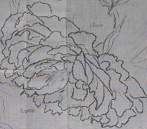 http://www.archive-host2.com/membres/images/1336321151/fleurs/pivoines/cornu/mc_0_dessin_2.jpg