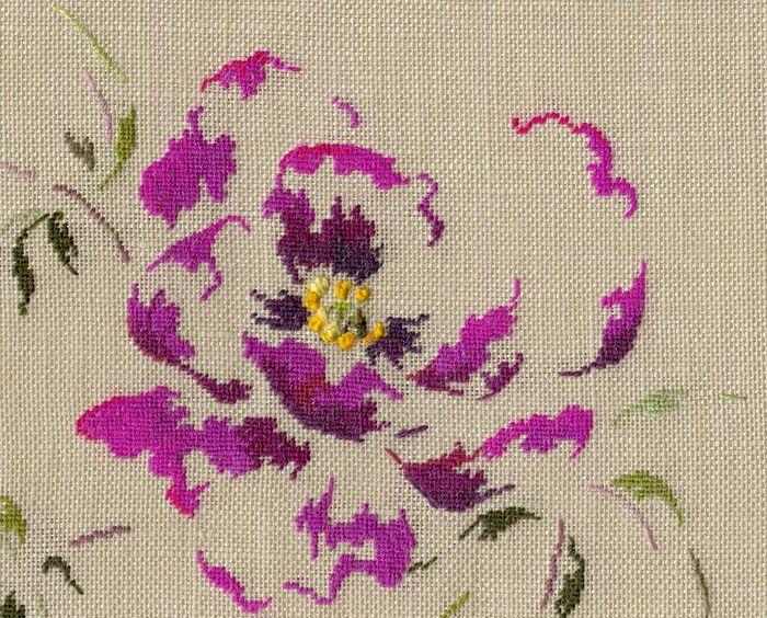http://www.archive-host2.com/membres/images/1336321151/fleurs/pivoines/le_juge_incorruptible/le_juge_incorruptible_G.jpg