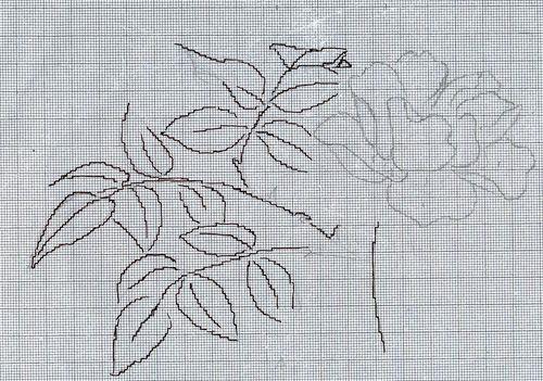 http://www.archive-host2.com/membres/images/1336321151/fleurs/roses/Rhodophile/R_G-dessin-BG.jpg