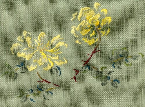 http://www.archive-host2.com/membres/images/1336321151/fleurs/roses/Rosa_spinosissima/double_Yellow-d.jpg