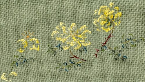 http://www.archive-host2.com/membres/images/1336321151/fleurs/roses/Rosa_spinosissima/double_Yellow-f.jpg