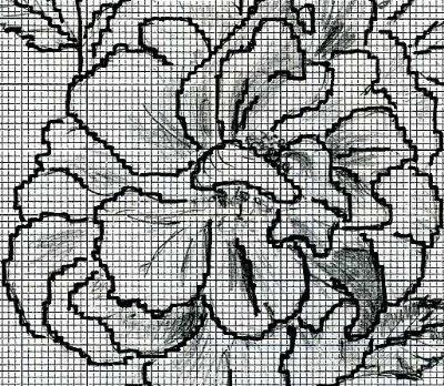 http://www.archive-host2.com/membres/images/1336321151/fleurs/roses/bugnet/thbugnet_dessin_c.jpg