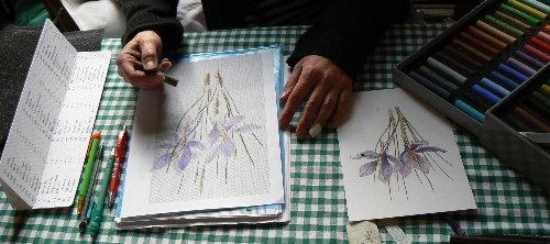 http://www.archive-host2.com/membres/images/1336321151/fleurs/safran/sfr_d1.jpg