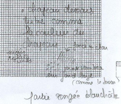 http://www.archive-host2.com/membres/images/1336321151/legumes/champignons/cepe_SMAM/cepe_smam_dessin-t2.jpg