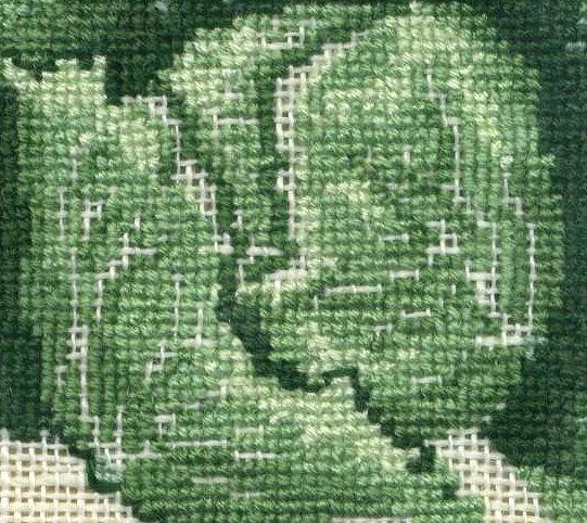 http://www.archive-host2.com/membres/images/1336321151/legumes/choux_coeur.jpg