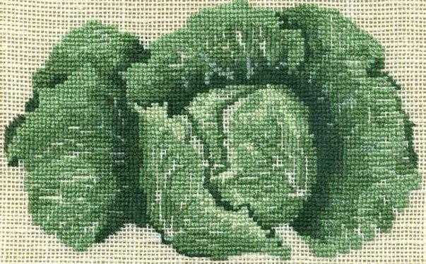 http://www.archive-host2.com/membres/images/1336321151/legumes/choux_gros.jpg