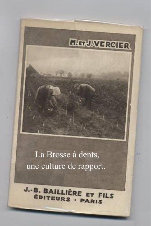 http://www.archive-host2.com/membres/images/1336321151/nawak/gag/brossa/asperge.JPG